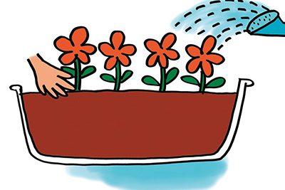 花壇作りと花の育て方