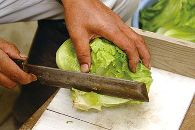 冬野菜の調整方法